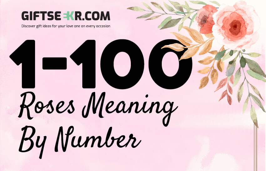Roses Meaning By Number : 1- 100 (Infographic)